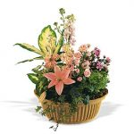 Basket Garden with fresh cut flowers added 85.00